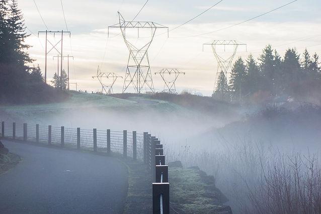 peter-kent-Power lines 25190.jpg