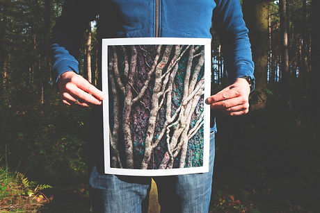 guy holding pic of tree roots.jpg