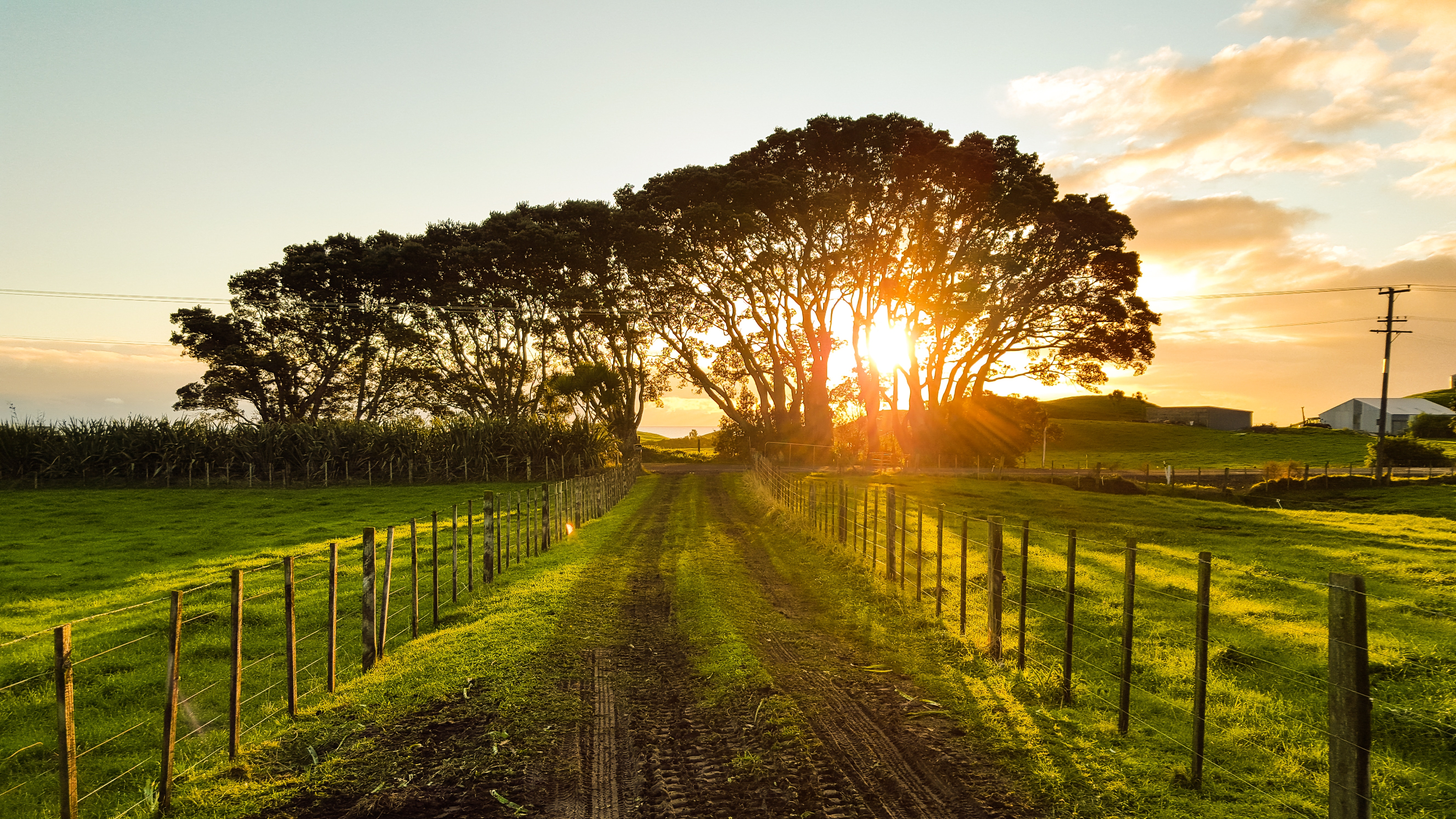 Sunset trail.jpg
