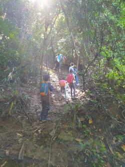 Explore nature trails