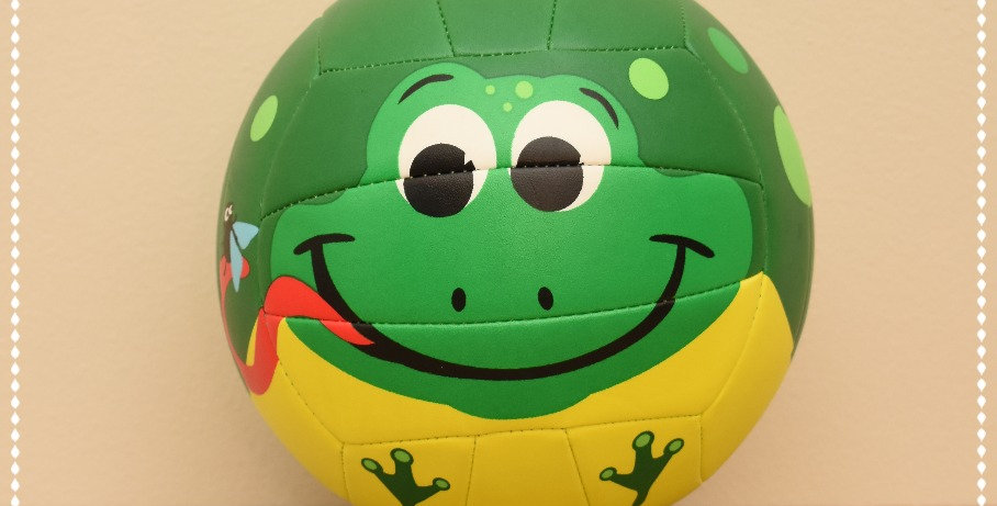 Molten Frog Volleyball