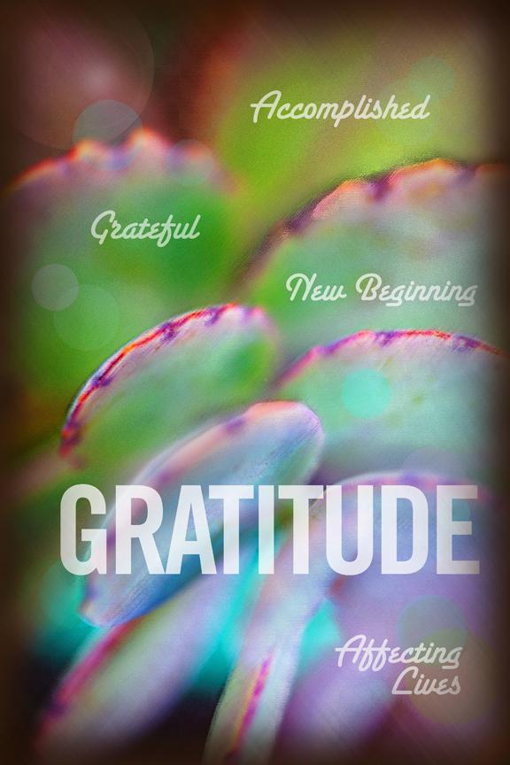 GRATITUDE SM