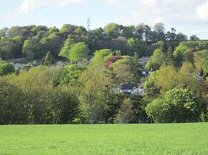 kirrie hill