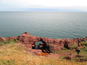 seaton cliffs nature reserve