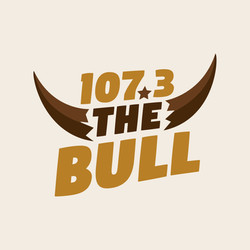 107.3 The Bull logo
