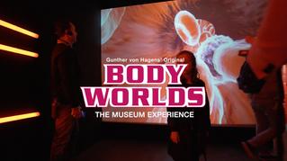 BodyWorlds Launch Nov 18