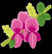 萩flower_hagi.png
