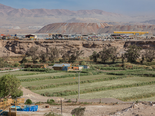 Desalación, una alternativa para el futuro y el desarrollo de la agricultura