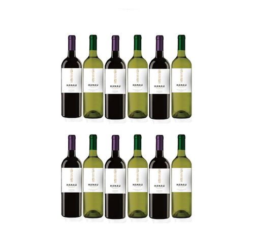 Sauvignon Blanc + Cabernet Sauvignon Central Valley Chile x 12