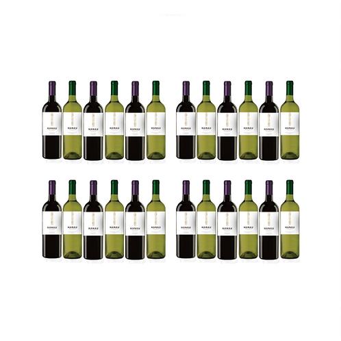 Sauvignon Blanc + Cabernet Sauvignon Central Valley Chile x 24