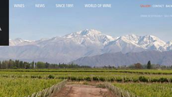 阿根廷五大葡萄酒出口商 - 聖安納酒莊(Bodegas Santa Ana)