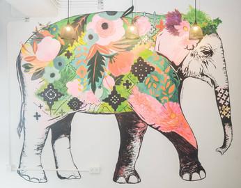 健身與美食共存的The Elephas