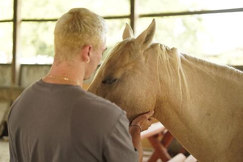 daniel and horse 2.jpg