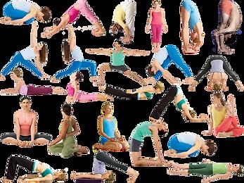Yoga 24, Boulazac, Perigueux, Bien-être, Dordogne, Perigord