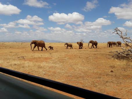Vorstellung Kenia / Introduction Kenia