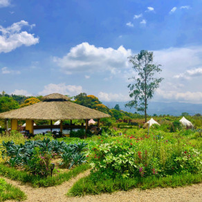 Kinkara Luxury Retreat Center at Rise, Costa Rica
