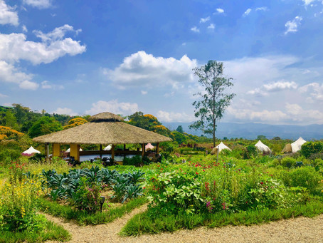 Kinkara Luxury Retreat Center at Rise, Costa Rica