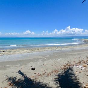 Finca Morpho, Costa Rica