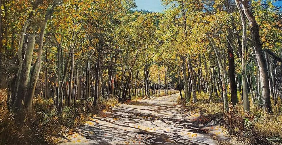 Road to Copeland Falls