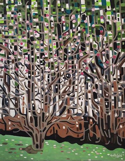 John Dugan's Tulip Tree
