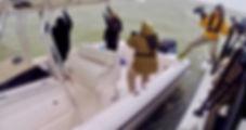 CD filming CBP guns out.jpg