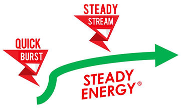 SteadyEnergy graphic.jpg