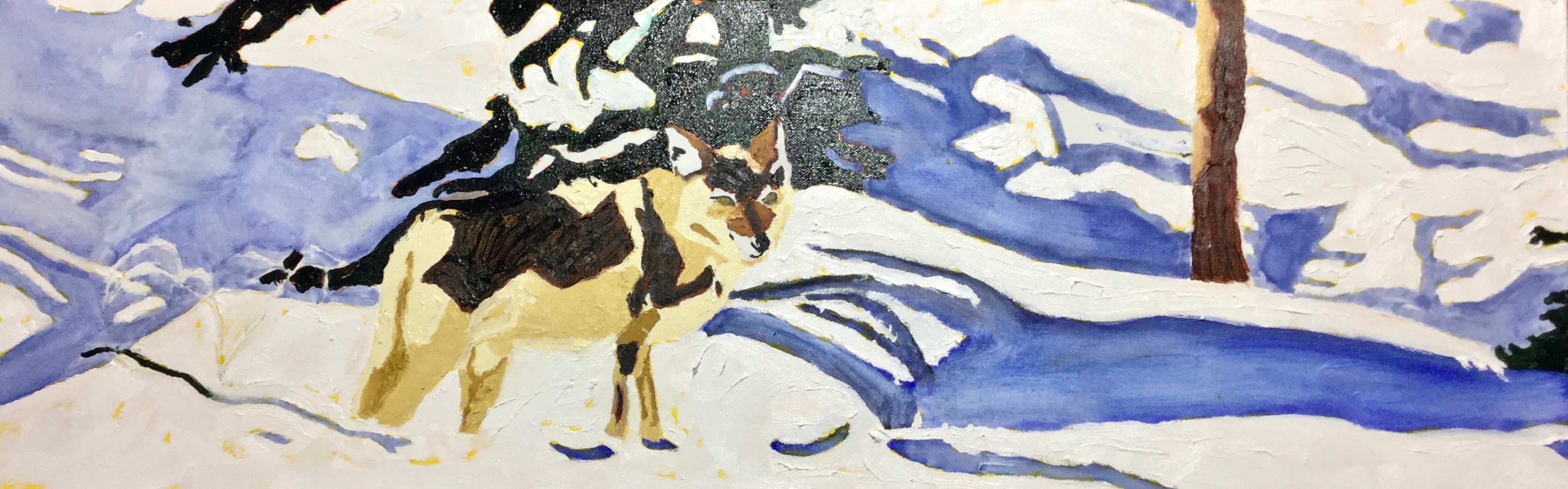 Cascade Shores Coyote= Pasquale
