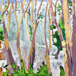 Trees For the Forest-Madrone Grove