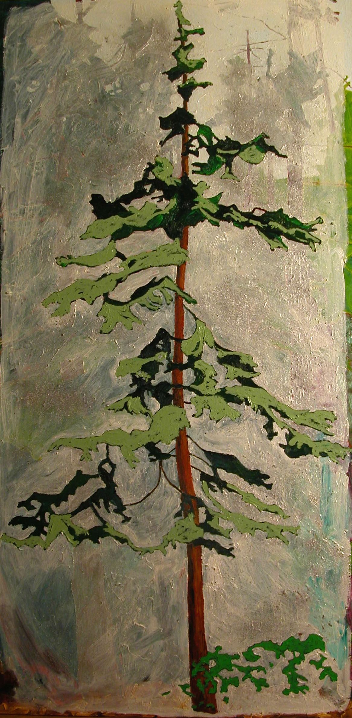 Tree For the Forest- Cedar