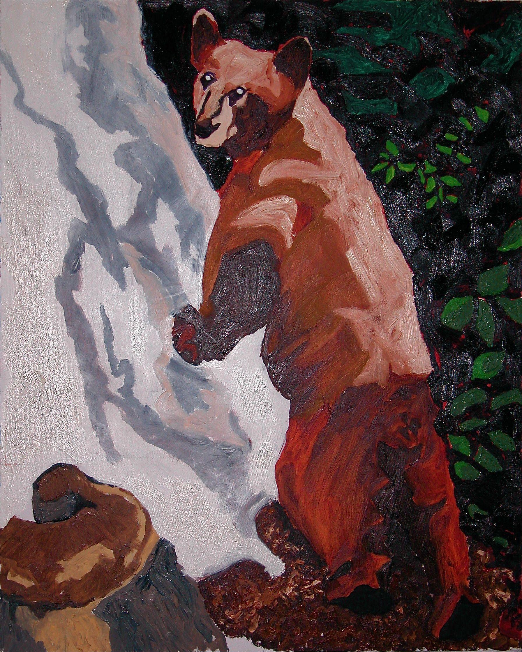 Backyard Bear #2
