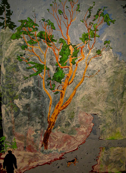 Tree for the forest-Madrone#2, A walk in Cascade Shores