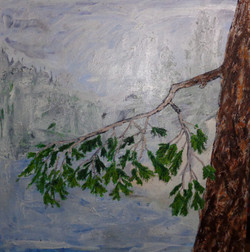 Tree for the Forest #5-Pine Branch