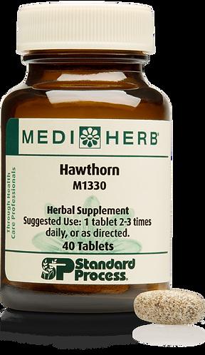 536 Hawthorne 40 T MediHerb  $ 23.50