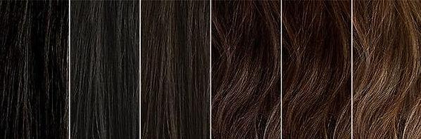 blog-hair-levels-1300x650_edited.jpg