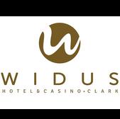 Website Logo_Widus.png