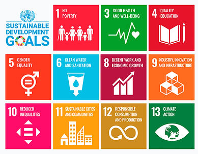 HOPE Sustainable Development Goals.jpg