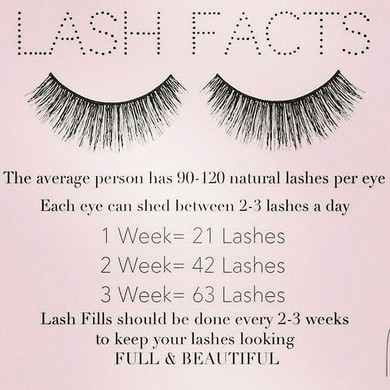 lash facts