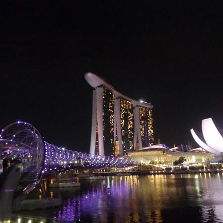 Ekspresi Struktur DNA pada Helix Bridge Singapura