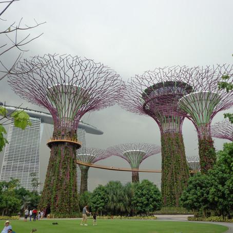 Tahun Baru di 'Dunia Avatar' Gardens by The Bay Singapura