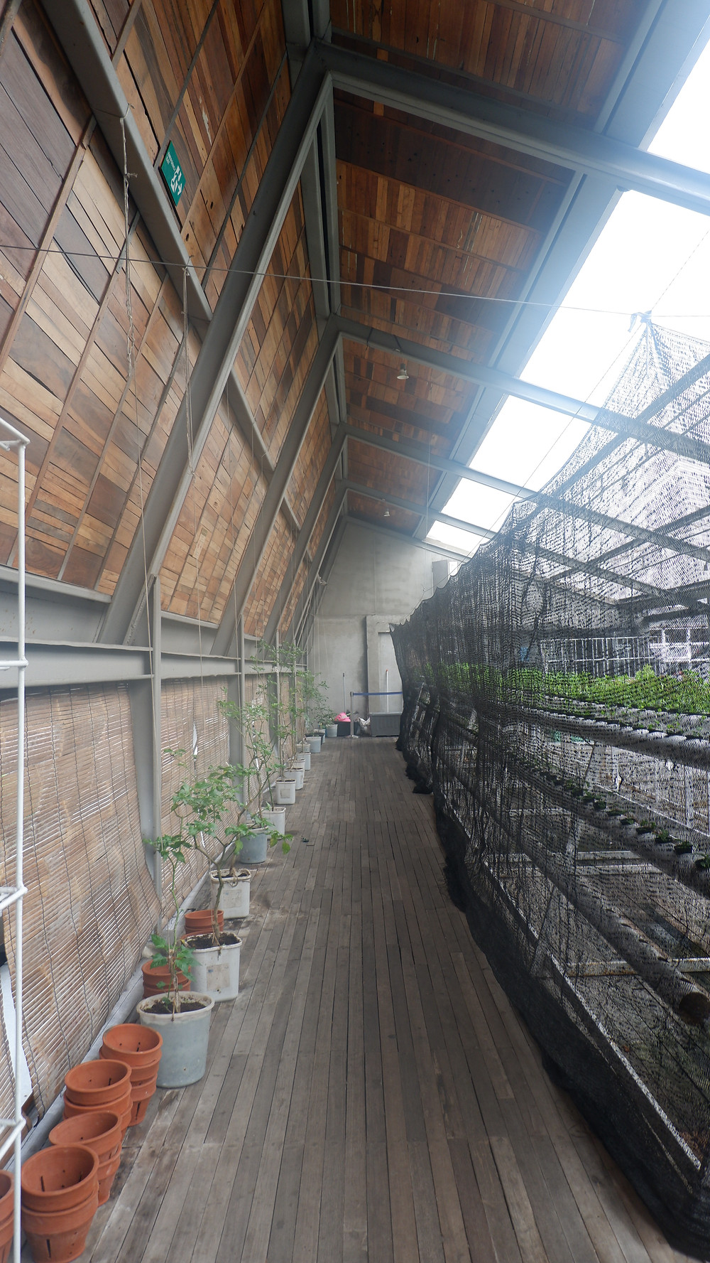 Creative Farming. (Image : K+AD Firma Arsitektur)