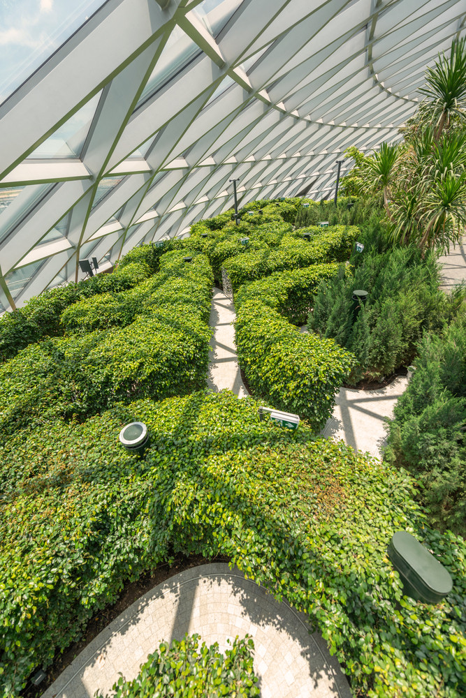 Hedge Mazes di The Canopy Park (Pict : Archdaily)