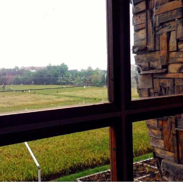 Pemandangan dari Rumah Rempah Karya. (Image : K+AD Firma Arsitektur)