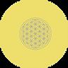fleur de vie or.png