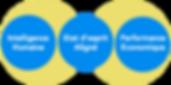 Objectifs holistiques.png