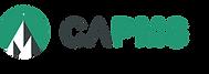 CAPMS - logo + minitatures.png