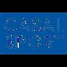 casal-sport logo.png