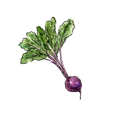 Beetroot.png