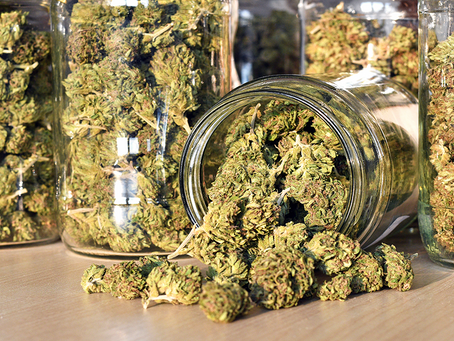 Best Practices For Cannabis Labeling