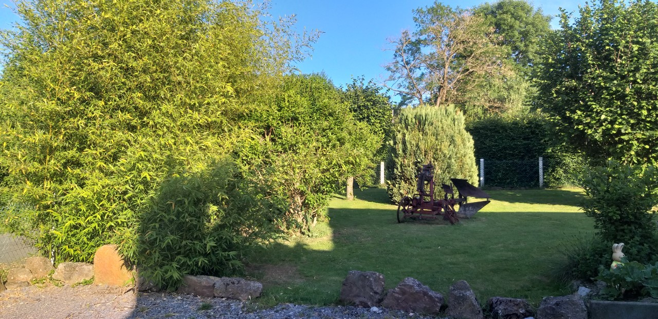 avondzonneke in de tuin