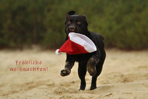 """Weihnachtskart """"Labradorwelpe mit Weihnachtsmütze"""""""